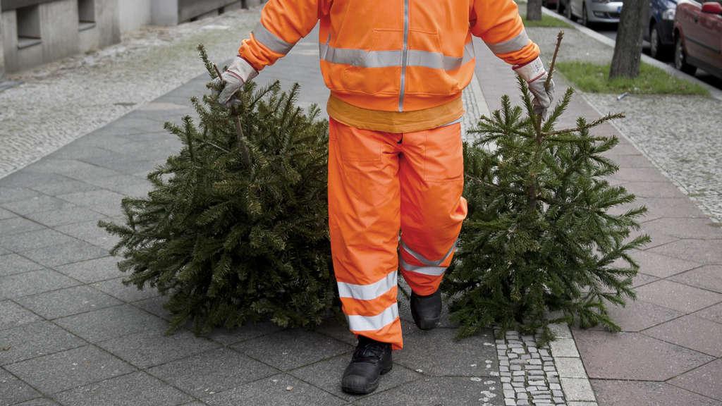 Frankfurt Weihnachtsbaum